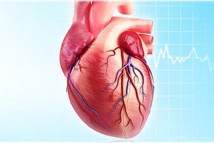 تاثیر ورزش در استخر در سلامت قلبی افراد